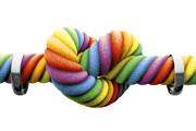 Greg Abbott '84 and Mark Phariss '85 on opposite sides of Texas same-sex marriage case